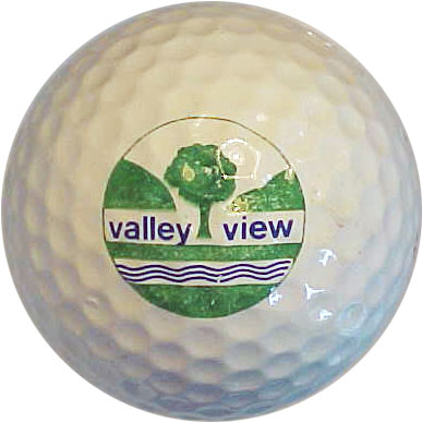Valley View GC, Shepherd, MI