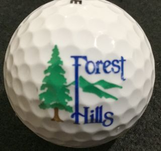Forest Hills GC, Forest Lake, MN