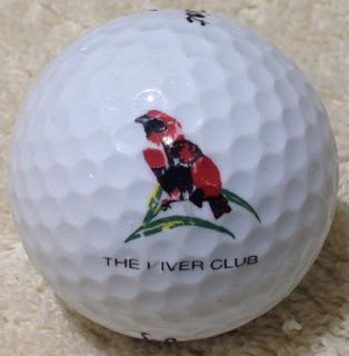 (The) River Club