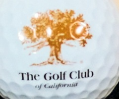 Landmark Golf Developer