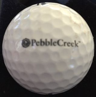 Pebble Creek GC, Goodyear, AZ