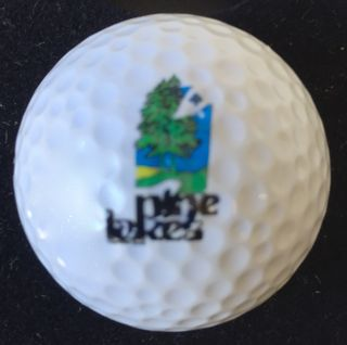 Pines Lake GC, Palm Coast, FL