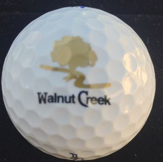 Walnut Creek CC, Mansfield, TX