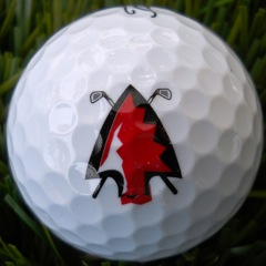 Peters Township (PA) HS Golf
